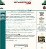 Field-Invest.com - Stones